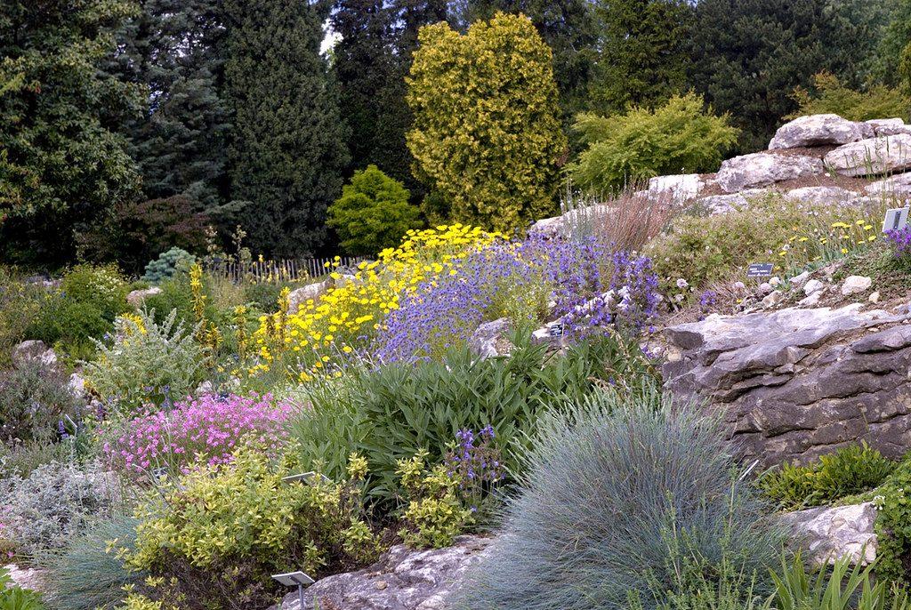 lieux insolites à Paris - Jardin Alpin